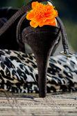 Black sexy shoe-heal — Stock Photo