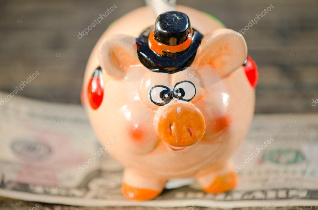 Saving in piggy bank. — Stock Photo #13849526