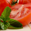 Very fresh tomatoes — Stock Photo #13850729