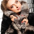 Woman in fur coat - Stock Photo