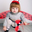 Stock Photo: Little baby ladybug