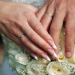 Stock Photo: Hands of bride and bridegroom with rinds