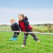 Children on farm gate — Stock Photo