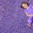 Girl lying on purple flowers — Stock Photo