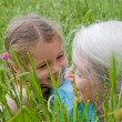 Foto Stock: Girl laughing with Grandmother in long grass