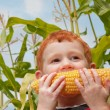 Stock Photo: Young boy eating fresh corn