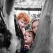Kids looking around tree in nature garden — Stock Photo