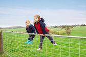 Children on farm gate — Stock Photo