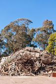Pile of raw timber to recycle at waste depot — Stock Photo