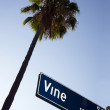 Vine Street — Stock Photo