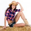 Cowgirl on a Haybale - Stock Photo