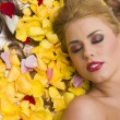 Rest in Flower Petals — Stock Photo