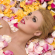 Stock Photo: Flower Petals