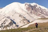 Mt. Rainier and Hiker — Stock Photo