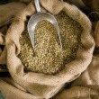 Stock Photo: Raw Coffee Beans