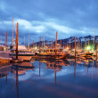 Seward Marina Alaska City Skyline Land of the Midnight Sun — Foto de Stock   #13894732