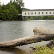 Goodpasture Bridge - Stock Photo