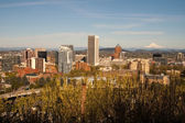 Portland Oregon — Stock Photo