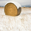 Snow Field Farmers Straw Hay Bay Snow Covered — Stock Photo