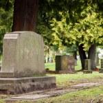 Granite Gravestone Headstone Grave Marker Urban Cemetery — Stock Photo #14166880