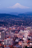 Portland Skyline Vertical Composition Downtown Buildings Mountain Background — Stock Photo