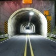 Road Tunnel Through Mountain Coastal Highway 101 Oregon Territory USA — Stock Photo