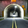 Stock Photo: Road Tunnel Through Mountain Coastal Highway 101 Oregon Territory USA