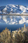 Columbia River Past Homes Slow After Fresh Snow — Stock Photo