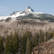 Three Fingered Jack Cascade Range Oregon State USA — Stock Photo