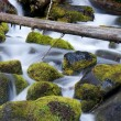 Royalty-Free Stock Photo: Moss Filled Boulders Fill Stream as Water Rushes By