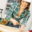Stock Photo: WomWorks on Bench Building Something