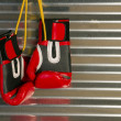 Red Boxing Gloves Hanging on Hook — Stock Photo #20789295