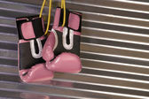 Pink Boxing Gloves Hanging on a Hook — Stock Photo