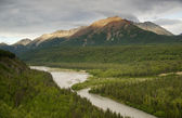 The Matanuska River cuts Through Woods at Chugach Mountains Base — Stock Photo