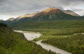 The Matanuska River cuts Through Woods at Chugach Mountains Base — Stock Photo