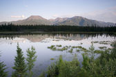 Scenic Marsh Water Panoramic Mountain Landscape Outback Alaska — Stock Photo