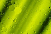 Lime Green Tones Abstract Hortizontal Design Background Rounds — Foto Stock