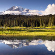 Saturated Color at Reflection Lake Mt. Rainier National Park — Stock Photo
