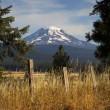 Grassland Fence Countryside Mount Adams Mountain Farmland Landsc — Stock Photo