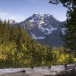 Постер, плакат: Fire Road Overlooks Big Four Peak North Cascades Mountain Range