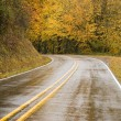 Wet Blacktop Two Lane Highway Curves Through Fall Trees Autumn — Stock Photo