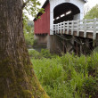 Currin Covered Bridge Row River Valley Vintage Road Lanscape — Stock Photo