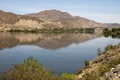 Columbia River Basin Lush Farmland River's Edge Washington State — Stock Photo