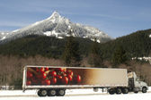 Truck Transports Foods Goods Over Road Through North Cascades Washington — Stock Photo