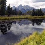 Overcast Day Snake River Jagged Peaks Grand Teton Wyoming — Stock Photo