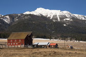 Red Barn Outbuilding Mountain Ranch Farm Homestead Western USA — Stock Photo
