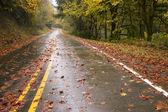 Dia chuvoso de outono chuvoso deixa viagem de estrada queda dois lane — Foto Stock