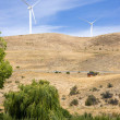 Rural Country Side Modern Green Wind Energy Generator Turibne — Stock Photo
