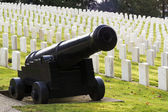 Large Military Cannon Stands Enlisted Men Cemetery Headstones Burial Ground — Stock Photo