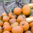 Farm Scene Old Wagon Vegetable Pile Autumn Pumpkins October — Stock Photo #33213971